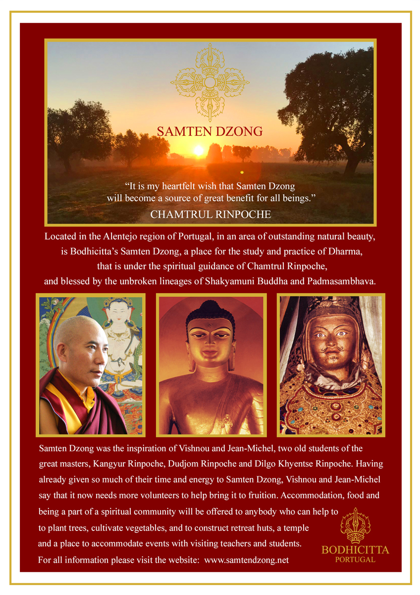 Samten Dzong Project Flyer